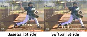 baseball vs softball stride length