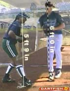 height baseball softball stride length