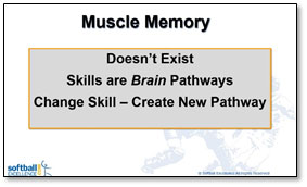 muscle memory brain pathways repetition reps skill create new practice