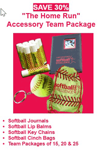 home run accessory package team gift holiday player save